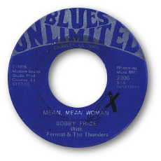 Bluesunlimited2006